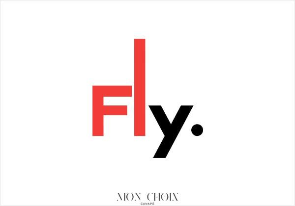 Avis canapé Fly